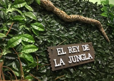la-jungla-encantada-instalaciones-37