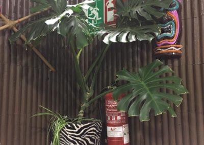 la-jungla-encantada-instalaciones-40