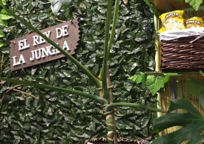 la-jungla-encantada-instalaciones-43